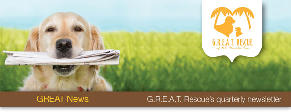 GREAT News | G.R.E.A.T. Rescue's quarterly newsletter